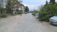 По зрителски сигнал: Кой отсече 14 здрави дървета в пловдивския Район Западен?
