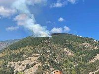 Голям пожар избухна над Водната кула в Карлово