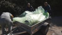 Д-р Владимир Тодоров: Мечката, която беше намерена убита в Родопите, е трябвало да бъде застреляна
