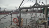 """Рибата около Яйлата изчезва заради кораба """"Вера Су"""", рибари искат за влязат в кризисния щаб"""