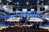Трима българи се класираха за финалите на Световното по кикбокс в Италия
