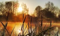 Слънчево и утре, през уикенда - захлаждане