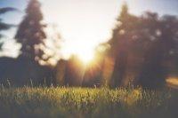 Слънчево време и затопляне през новата седмица