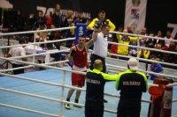 Само един българин на ринга в Белград днес