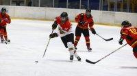 Хокеистките ни ще играят квалификации за Пекин 2022